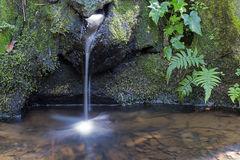 fuente natural